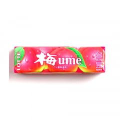 Chiclete Japonês Sabor Umê - 27 gramas